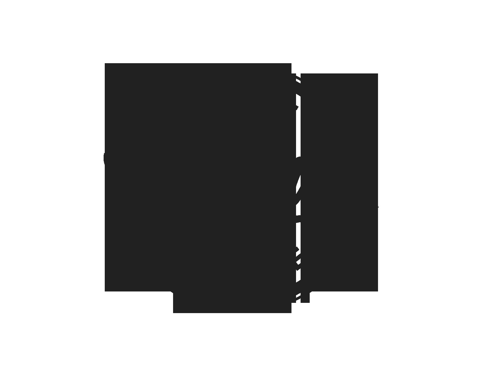 Logo Winner