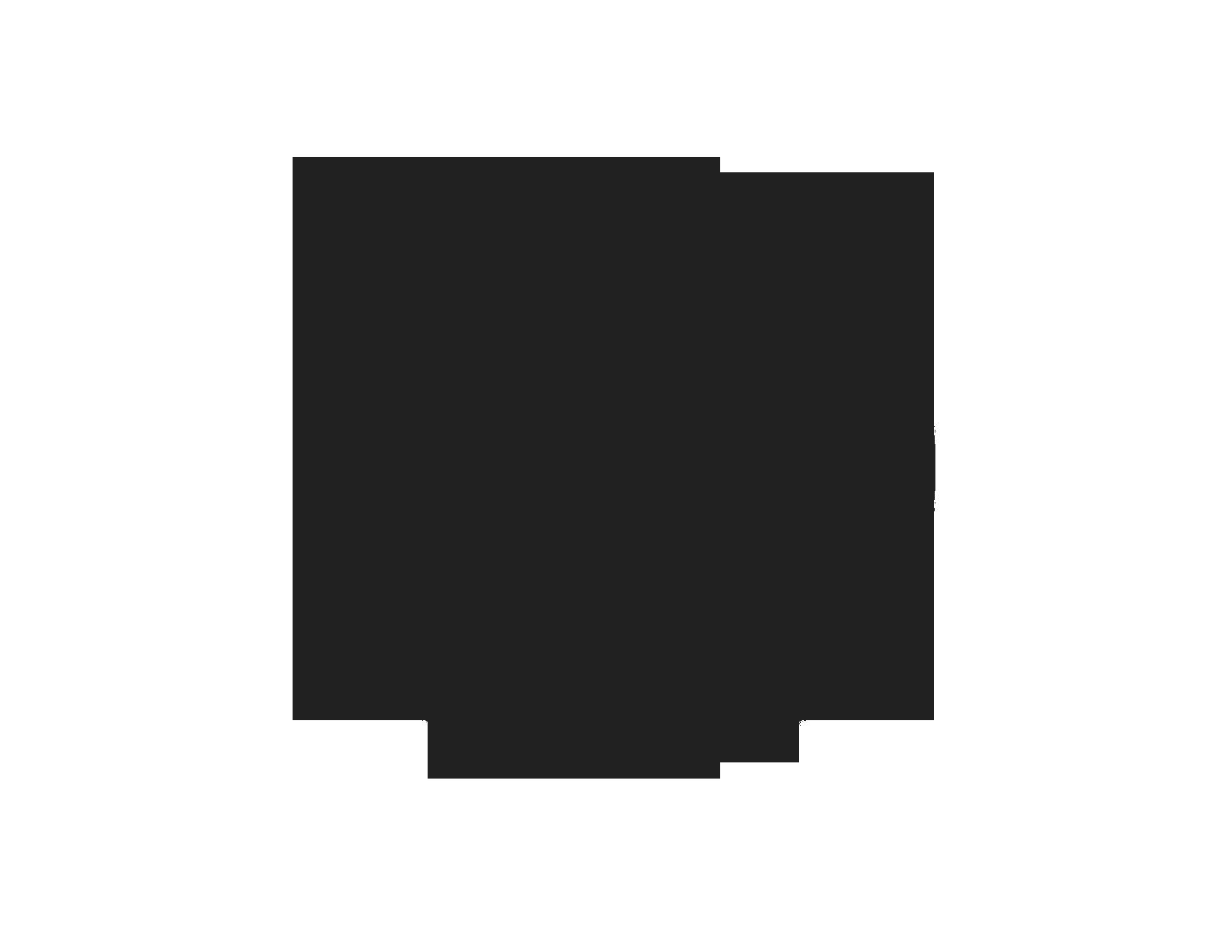 Logo Restauracja Vincitore Primavera